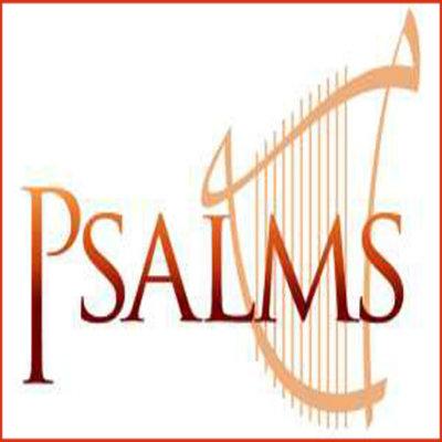 Bible Study: Psalms